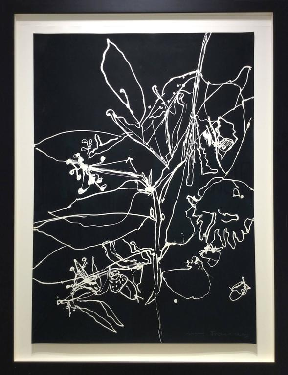 anne francey abstract drawing seismography 22 contemporary abstract black white flower drawing