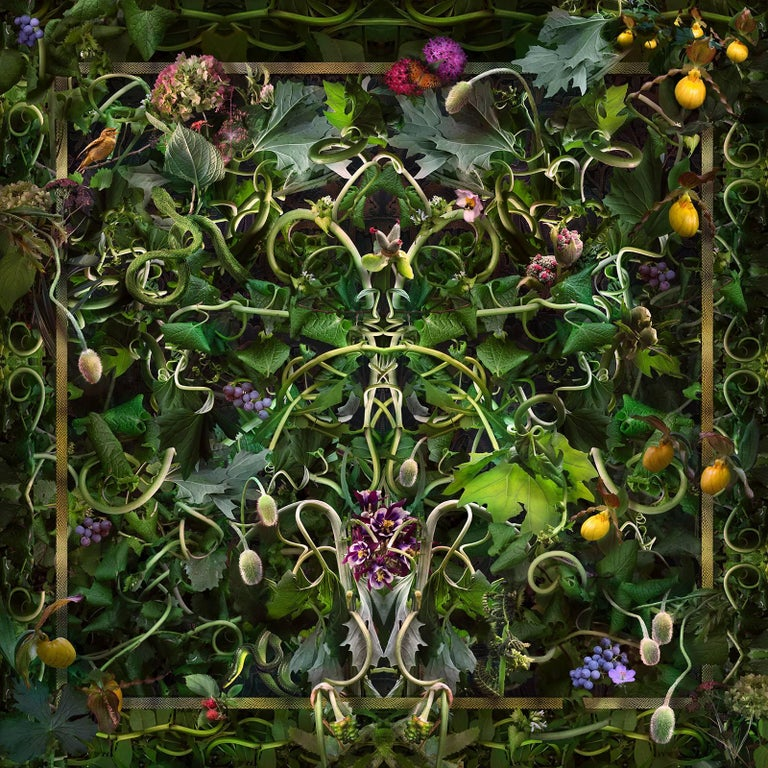 Lisa A. Frank Still-Life Photograph - Feared, Loved (Abstract Baroque Style Still Life Photo of Green Vines & Flowers)