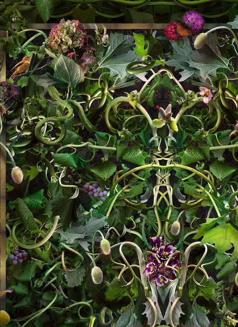 Feared, Loved (Abstract Baroque Style Still Life Photo of Green Vines & Flowers) - Photograph by Lisa A. Frank