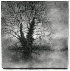 Winter Tree 4 (Black & White Realistic Landscape Charcoal Drawing on Paper)