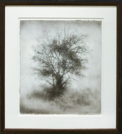 Greenhorn (Black & White Realistic Tree Landscape Charcoal Drawing on Paper)