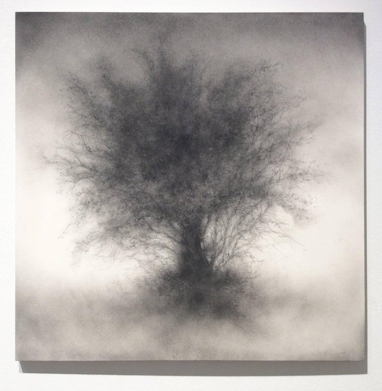 Whippersnapper (Realistic Charcoal Landscape Drawing on Panel of a Large Tree) For Sale 5