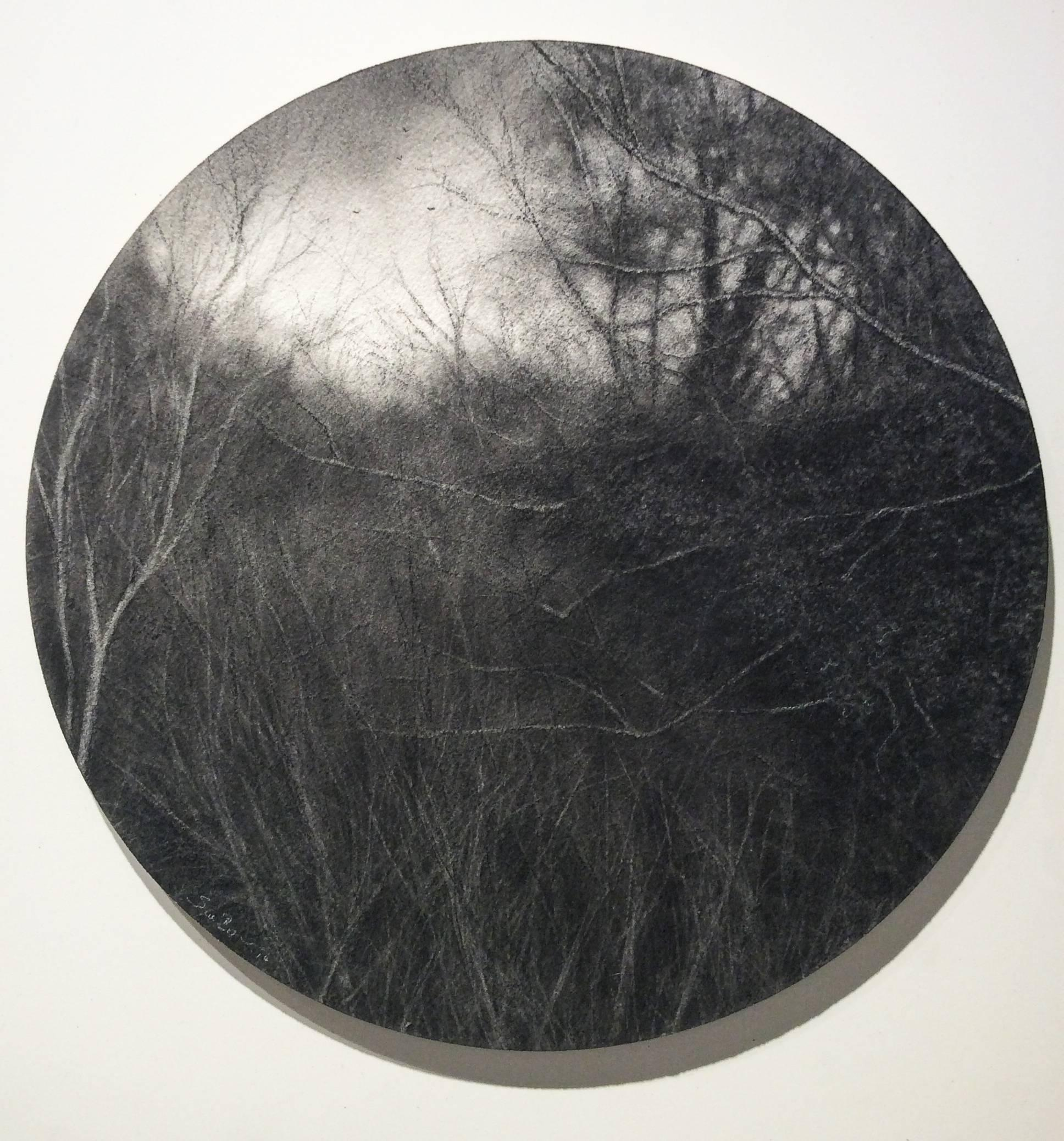 Aperture (Realistic Charcoal Landscape Drawing of Forest on Circular Panel)