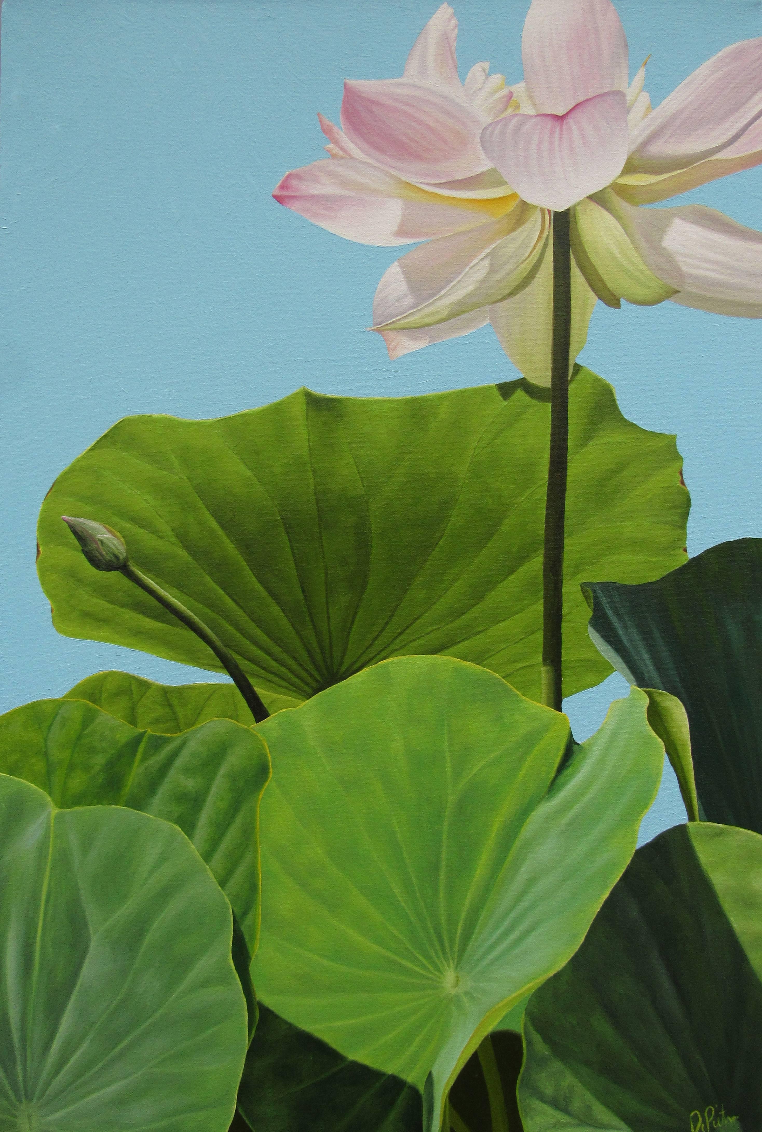 Frank Dipietro Lotus Number Four Hard Edge Floral Still Life