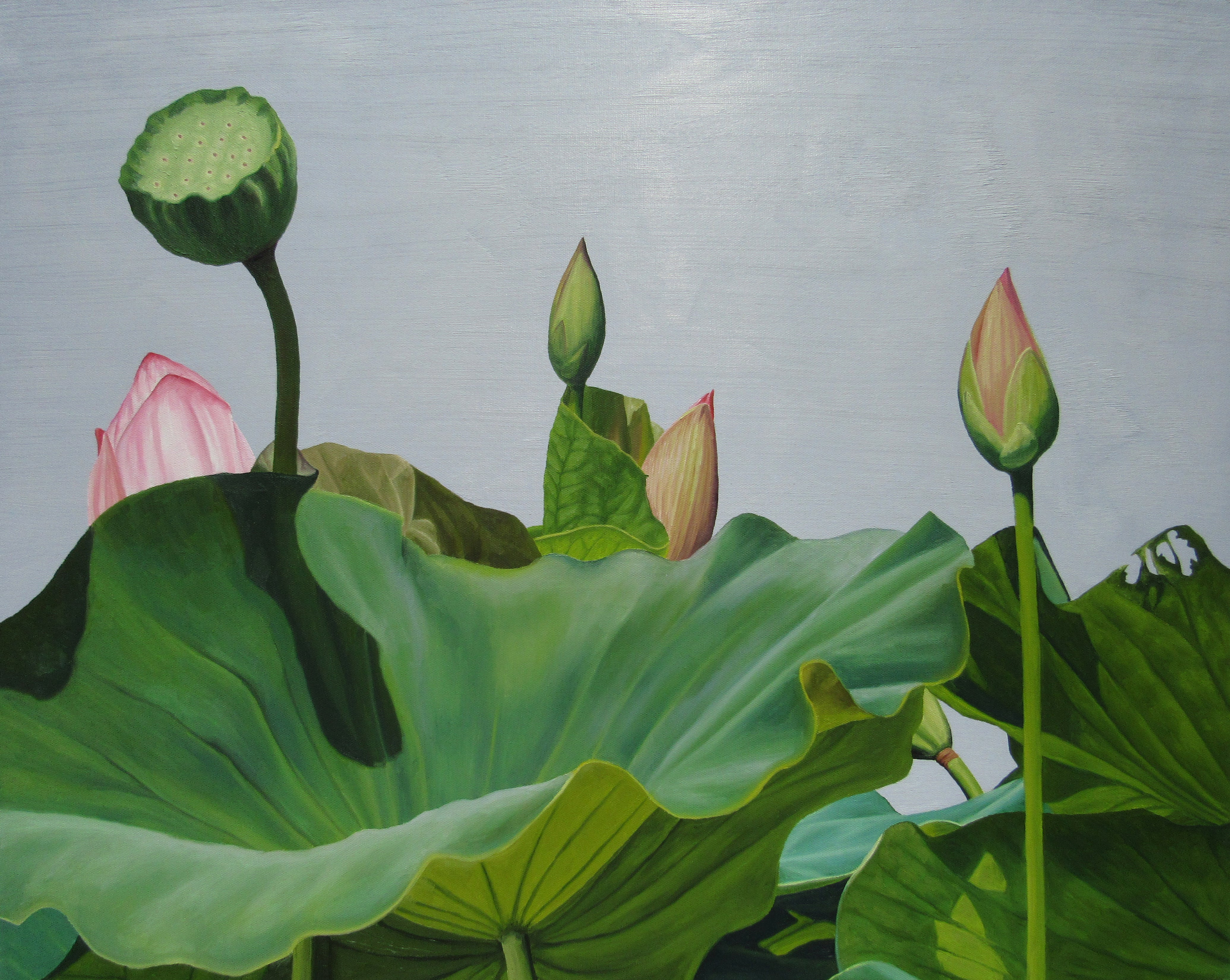 Frank Dipietro Lotus Number Two Realist Floral Still Life