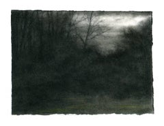 Cold Light, Winter Trees (Dark Charcoal Landscape Drawing of a Country Forest)
