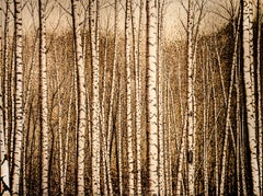 Moutain Birches (Realistic Landscape of a Birch Forest, Burned Drawing on Panel)