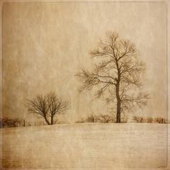 Jerry Freedner - Winter Farm Fields