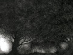 And They Hummed of Mystery (Modern Charcoal Landscape Drawing on Panel)