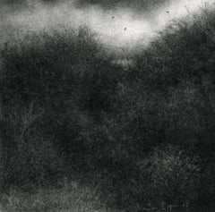 Edgeland XI (Miniature Realistic Modern Landscape Drawing in Black Charcoal)
