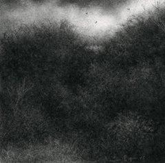Edgeland XI (Miniature Realistic Modern Landscape Drawing in Black Charcoal)