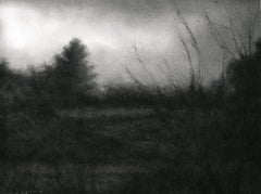 Edgeland (Modern Realist Charcoal Landscape Drawing in Black & Grey)