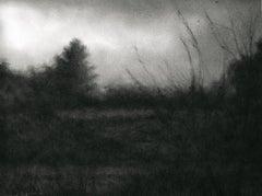 Edgeland (Modern Realist Charcoal Landscape Drawing in Black & Grey)