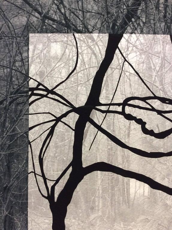 Blue Black (Contemporary Landscape Photo with Lyrical Vines and Geometric Shape) For Sale 2