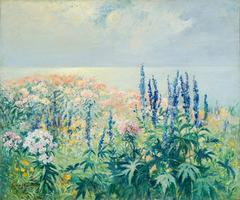 Phlox and Delphinium by the Sea, Cape Cod