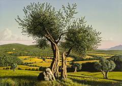 Italian Landscape:  Umbria