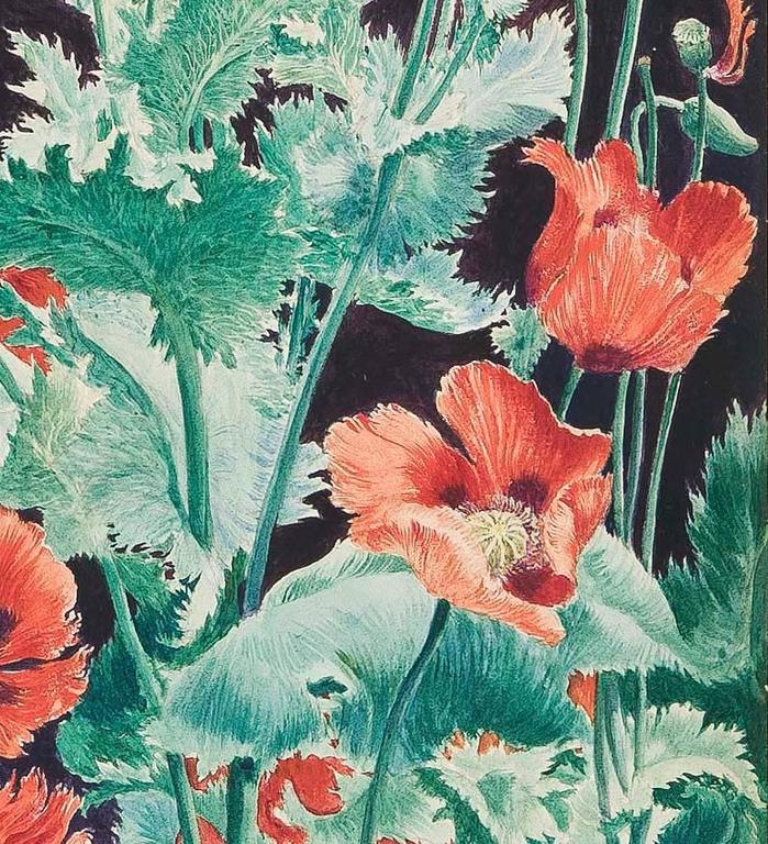 Shirley Poppies - Black Still-Life Painting by John Rutherford Boyd