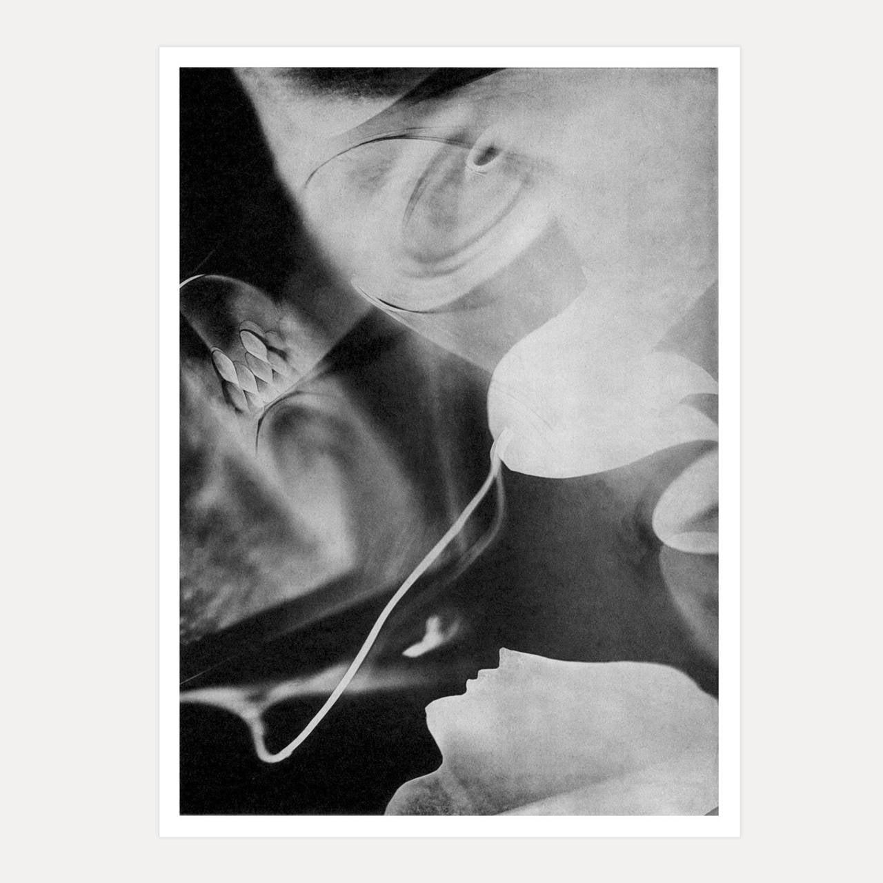 Jacques Camus Photogram No 1 Paris C1930 At 1stdibs