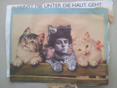 Cats: Kunst die Unter