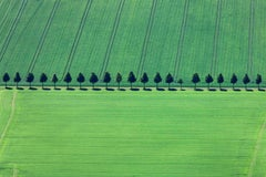 Neatly Lined - Aerial color photography