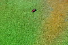 Swan lake - Aerial color photography