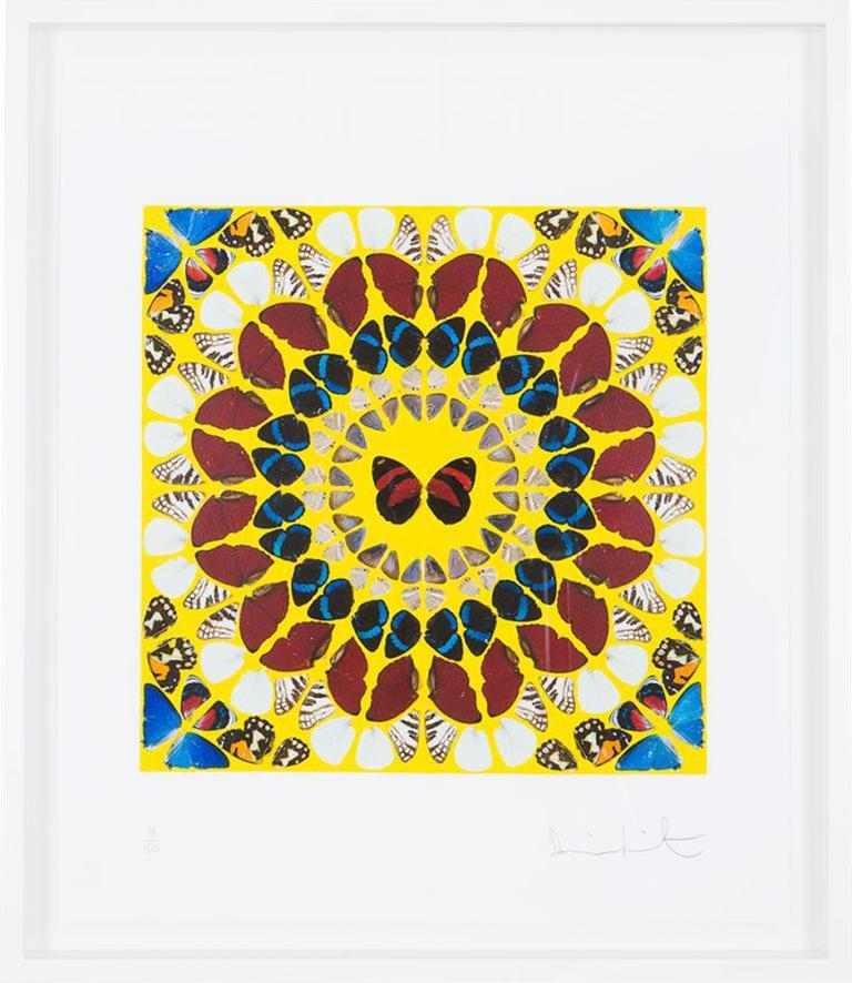 David White - Sea Turtle, Print For Sale at 1stdibs