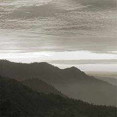 Photography- California landscapes, abstracts of nature (silver gelatin prints)