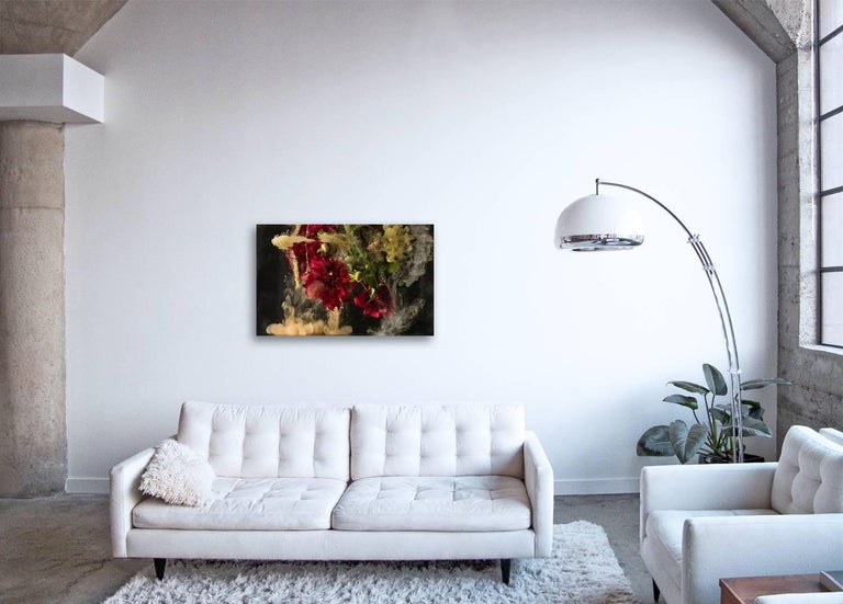 Flora I - large format photograph of abstract floral and liquid cloud explosion - Contemporary Photograph by Christian Stoll