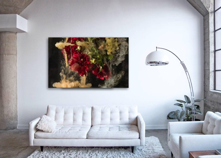 Flora I - large format photograph of abstract floral and liquid cloud explosion - Photograph by Christian Stoll