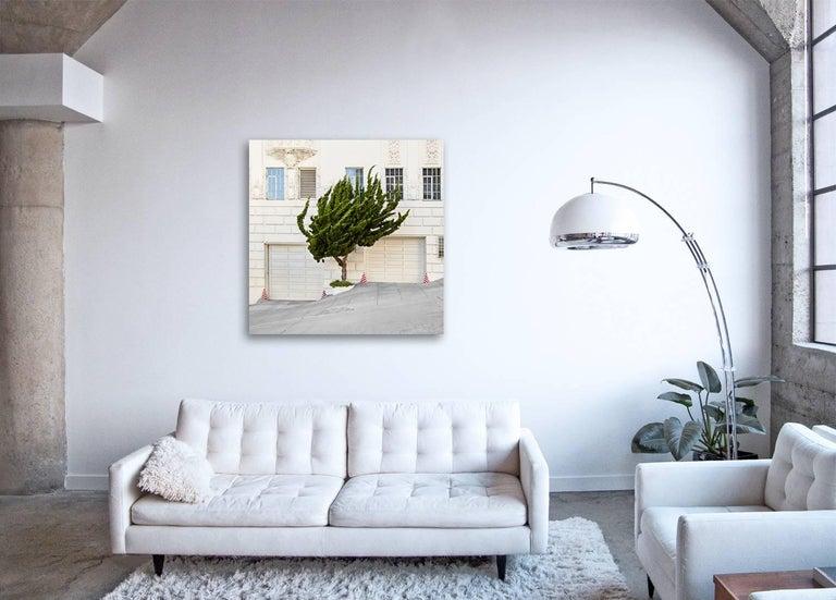 Topiary I  ( 48 x 48