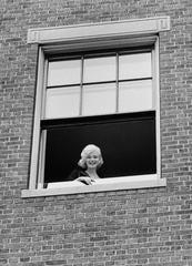 Marilyn in the Window