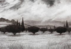Olive Grove with Cypress Trees - Black and White Landscape of Greek Island