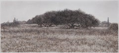Olive Trees in Field - Black and White Monotype with Greek Landscape