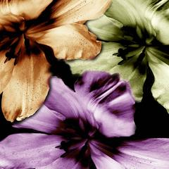 Flower Ghosts 5 - 2