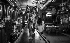 The Wolf of Main Street II