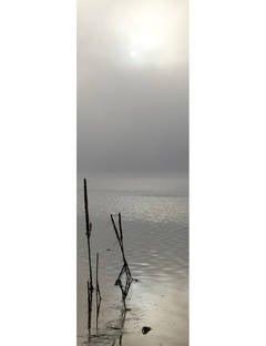 Sunrise, August 24, 2008, 7:17 AM, Eagle Nest Lake, New Mexico