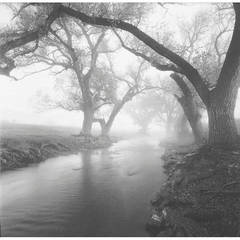 Branch Arch, Limpia Creek, Fort Davis, Texas