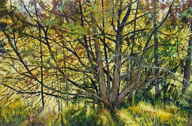 Jane K. Starks Landscape Art - Fort Burgwin, NM, Spring