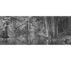 April Light, Cypress Creek, Wimberley, Texas