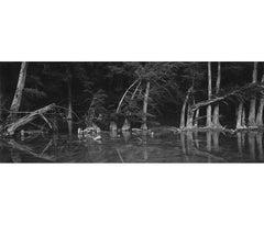 Cypress Island, Blanco River, Wimberley, Texas