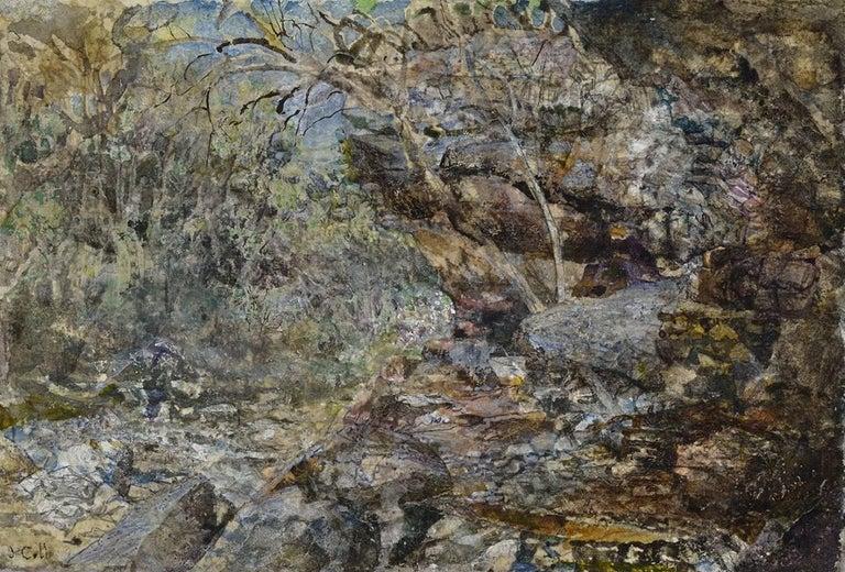 Sycamore Creek - Art by John Cobb