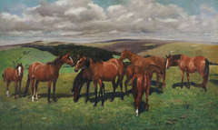Untitled (Eight Horses)