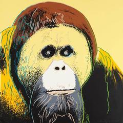 Orangutan 299 by Andy Warhol