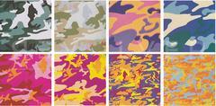 Camouflage Complete Portfolio (FS II.406-FS II.413)