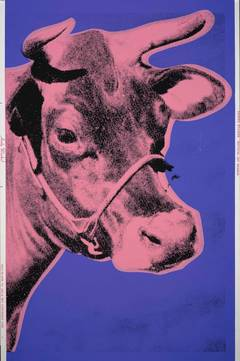 Cow, Pink and Purple (FS II.12A)