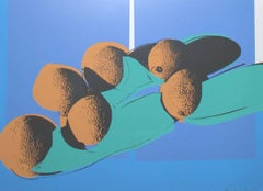 Space Fruit Cantaloupes (FS II.201)