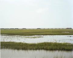 Untitled (VS-15-84), Galveston, TX