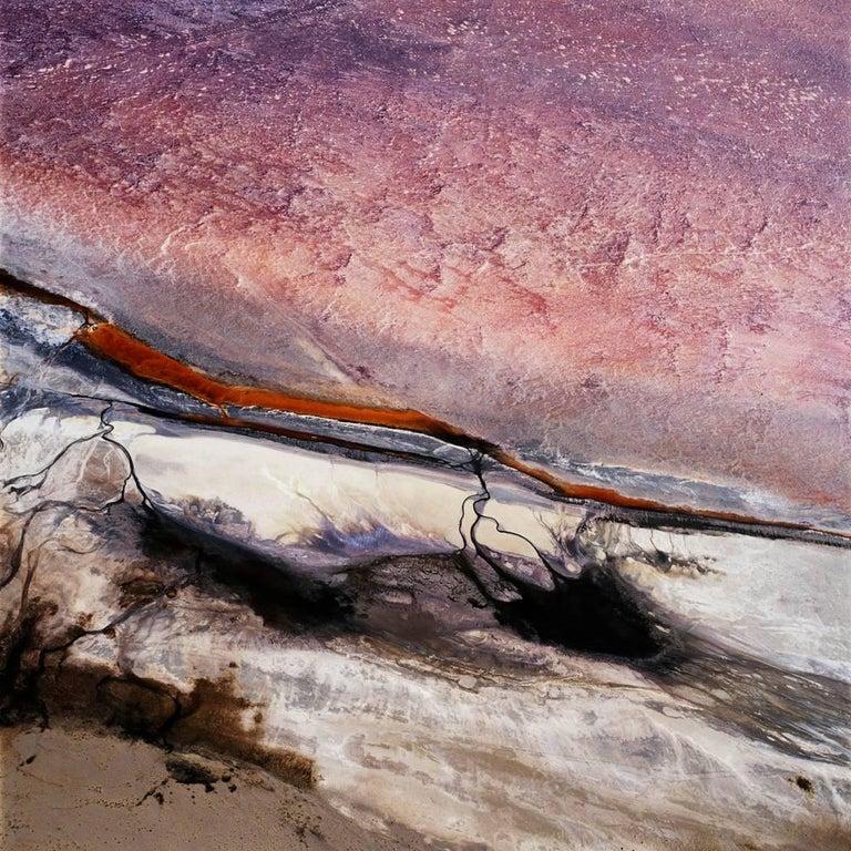 David Maisel Color Photograph - The Lake Project 22