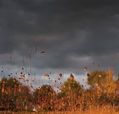 Hanging Sky 01