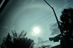 Sun Halo, Greyhound to DC #3